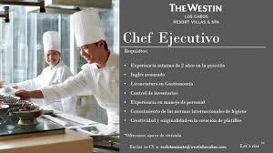 Carta Presentacion Cv Chef