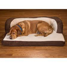 Serta Dog Bed by Wonderful Serta Dog Bed 19 Serta Orthopedic Dog Bed Xl Quilted