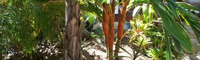 100 Agnes Water Bush Retreat QLD AU Holiday Lettings Houses More HomeAway