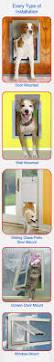 Best Pet Doors For Patio Doors by Dog Doors On Sale Pet Doors Door Wall Glass Installation