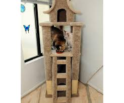 Favorite Trekkies Then Cats Also Cat Tree Star Trek Design Star ... Cat House Plans Indoor Webbkyrkancom Custom Built Homes Home And Architect Design On Pinterest Arafen Modest Decoration Modern Tree Fniture Picturesque Japanese Designer Creates Stylish For A Minimalist Designs Room With View Windows Mirror Owners Cramped 2740133 Center 1 Trees Vesper V High Base Gingham Slip Cover Cute Vintageinspired Kitchen Fresh Interior Inside Pictures Unique Real 89 For Ideas Wall Shelves Playgorund Cats 5r Cat House 6 Exciting Gallery Best Idea Home Design