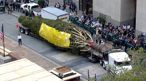 Rockefeller Center Christmas Tree Facts 2014 by Rockefeller Center Christmas Tree 2015 Christmas Ideas