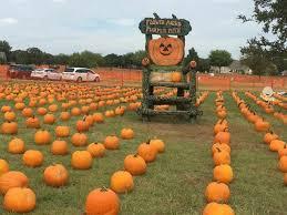 Best Pumpkin Patch Austin Texas by 8 Top Pumpkin Patches In Texas Tripstodiscover Com