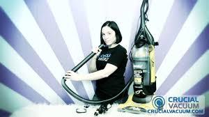 Eureka Airspeed All Floors Brush Not Spinning by Eureka Airspeed Belt U0026 Brush Roller Replacement Part 63391 4