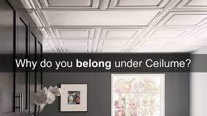 Ceilume Coffered Ceiling Tiles by Ceilume Ceilings You Can Look Up To Youtube