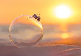 Seashell Christmas Tree Garland by 8 Great Ideas For Seashell Christmas Decorations