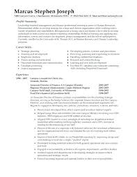 Functional Summary On Resume Example Together With Sample For Latest And Samples