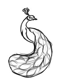 Peacock Clipart Sketch 2