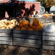 Pumpkin Patch Denver Pa by Kohler Farms Farmers Market 1262 Limekiln Pike Ambler Pa