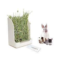 Amazoncom Guinea Pigs Hay Feeder Rack Rabbit MessFree Alfalfa