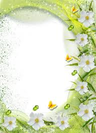 White Flower Frame Transparent Background