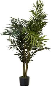 Beachcrest Home Black Hammock Palm Tree with Pot & Reviews