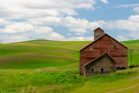 The Old Red Barn | Rick Holliday Red Barn Green Roof Blue Sky Stock Photo Image 58492074 What Color Is This Bay Packers Barn Minnesota Prairie Roots Pfun Tx Long Bigstock With Tin Photos A Stately Mikki Senkarik At Outlook Farm Wedding Maine Boston 1097 Best Old Barns Images On Pinterest Country Barns Photograph The Palouse Or Anywhere Really Tips From Pros Vermont Weddings 37654909