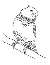 Rustic G923804 Love Bird Coloring Pages Birds Images For Colouring
