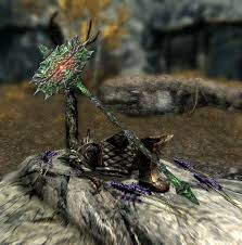 The Cursed Tribe Elder Scrolls