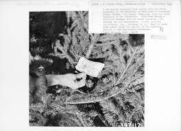 75 Douglas Fir Artificial Christmas Tree by Spotlight Tinseled Trivia The Unwritten Record