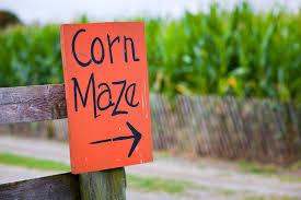 Keene Nh Pumpkin Festival Dates by New Hampshire U0027s Best Corn Mazes