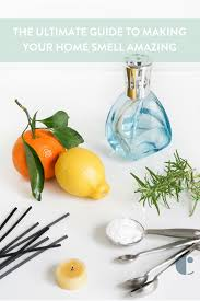 Lampe Berger Fragrance Ingredients by Make Your House Smell Good Home Fragrance Guide Curbly