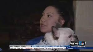 Pumpkin Patches Near Colorado Springs Co by Driver Crashes Through Wall Near Homes In Colorado Springs Youtube