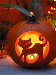 Carvable Foam Pumpkins Walmart by Best 25 Cat Pumpkin Ideas On Pinterest Cat Pumpkin Carving