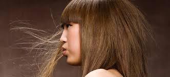 coiffeuse a domicile metz coiffeur à domicile coiffure metz 57