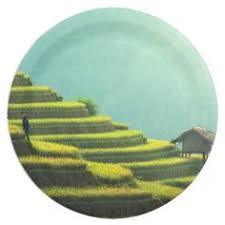 China Agriculture Rice Harvest Paper Plate