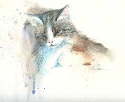 Watercolor Pencil Drawing Best 25 Art Ideas On Pinterest