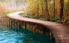 Woodworking Shows 2013 by Serene Lake Flow Around Pier In Forest Of Autumn Hd 1080p
