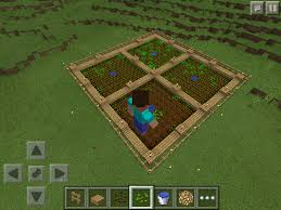 Minecraft Melon Seeds Pe by How To Grow Wheat Carrots Or Potatoes In Minecraft Pe U2013 Phoneresolve