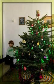 Pickle On Christmas Tree Myth by Chez Maximka December 2012