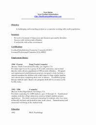 Sample Resume Objectives For Guidance Counselor Save General Objective Samples Lovely School