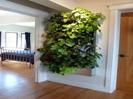 Indoor Living Wall Planters Ideas