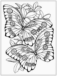 Spring Butterflies Free Printable Coloring Pages Butterfly In For Adults