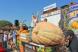 Half Moon Bay Pumpkin Festival Biggest Pumpkin by Giant Pumpkin Breaks American Record Local News Smdailyjournal Com
