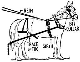 Free Horse Tack Clipart 1 page of Public Domain Clip Art