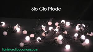 led mini globe string lights 50 bulbs 17 5 ft black wire multi