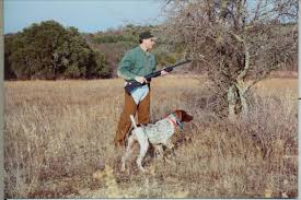 German Shorthaired Pointer Shed Hunter by Home
