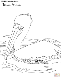 Click The Brown Pelican Coloring Pages To View Printable Version Or Color It Online Compatible With IPad And Android Tablets