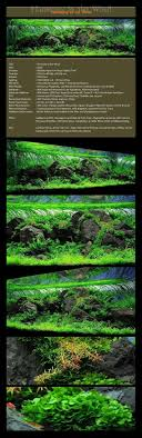 42 Best Nature Aquascaping Style || TAG Images On Pinterest ... Photo Planted Axolotl Aquascape Tank Caudataorg New To Hobby Friend Wanted Make An For As Cheap Basic Forms Aqua Rebell Huge Tutorial Step By Spontaneity James Findley Aquascaping Videos The Green Machine Aquarium Beautify Your Home With Unique Designs Aquascape Waterfall Its Called Strenght Of A Thousand Stone Youtube September 2010 The Month Sky Cliff Aquascaping 149 Best Images On Pinterest Ideas Advice Please 3ft Forum