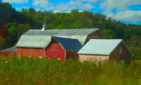 File:Three Red Barns - Panoramio.jpg - Wikimedia Commons Woodland Papercuts Custom Three Barn Farm Ketubah Belli Fiori St Louis Florist Cedars In Northville Michigan Wedding Land With Barns Ponds And Open Fields For Sale Rustic Entry Burlap Curtains At Streams Three Chimneys Farm Google Search The Pinterest Katie Kyle Get Married Anna Jones Photography Lilly Sadies Love Perry Mist Rolling Over Hills Onto A With Red Kansas Flint Quilt Trail