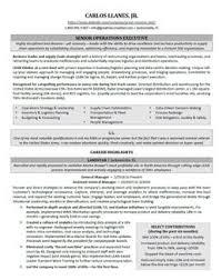 Senior Operations Executive Resume Sample