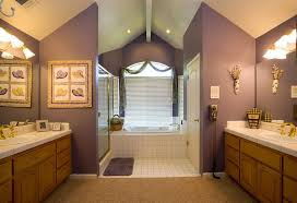 Mobile Home Decorating Ideas Single Wide by Remarkable Mobile Home Bathroom Renovation Within Bathroom Double