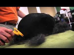 Shedding Blade Vs Furminator by Giant Long Hair Dog Grooming Deshedding Tool Stop Dog Shedding