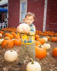 Pumpkin Patch Colorado Springs 2015 by Reynolds Ranch Harvest Festival At Western Museum Of Mining And