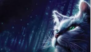 warrior cat harry potter producer joins creating the totally pawsome