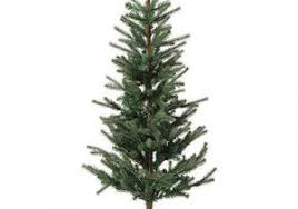 Top Best Most Realistic Artificial Christmas Tree Inspiration Of Types