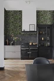 esszimmer tapete tropische dschungelblätter schwarz und dschungelgrün 139190