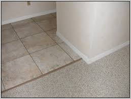 carpet to tile transition doorway tiles home decorating ideas