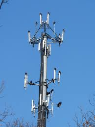 File Vultures on Cellphone Tower