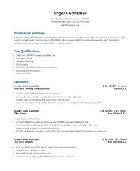 Sales Representative Resume Account Manager Example